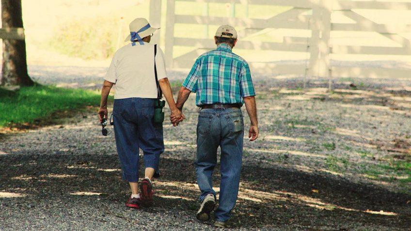 Demencija = Alzheimerio liga?